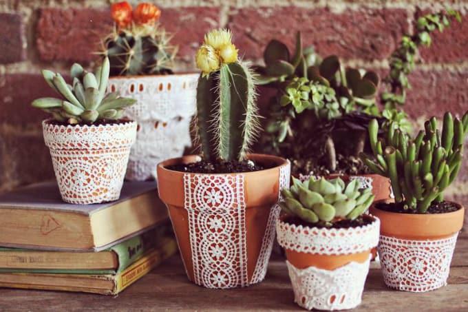 terracotta plant pots