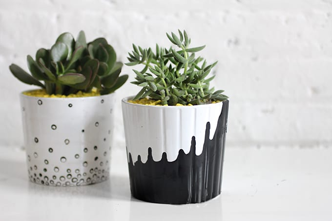 diy succulent plant 60 Creative DIY Planters You ll Love For Your Home  Cool Crafts