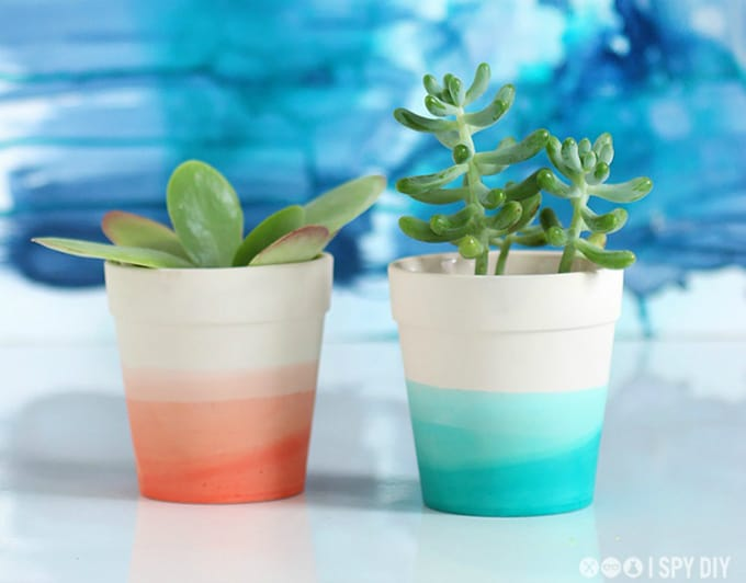 diy dip dye succulent pot
