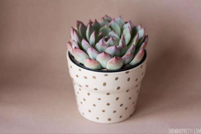 vaso de plantas personalizado