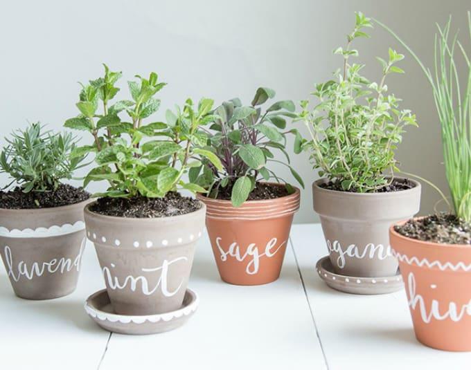 diy herb planter pots