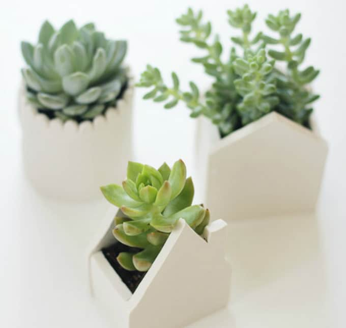 60 Creative DIY Planters You\'ll Love For Your Home • Cool Crafts