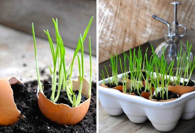 Do It Yourself Planters Design Decoration