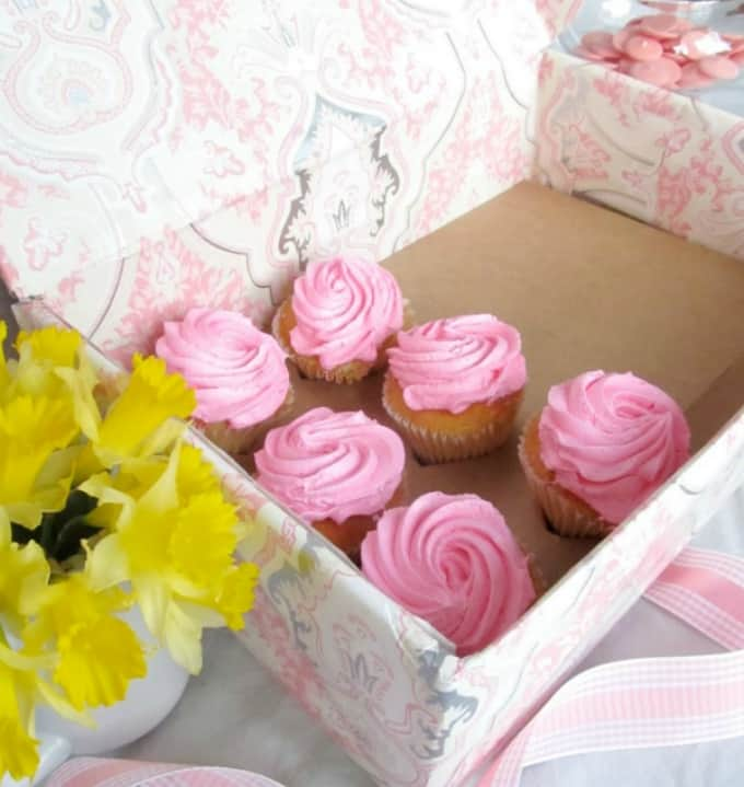 cupcake carrier on a budget