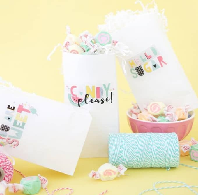 Printed Party Favor Bags - Check out 34 other eye-catching goodie bag ideas that you can make for your next party.   Coolcrafts.com
