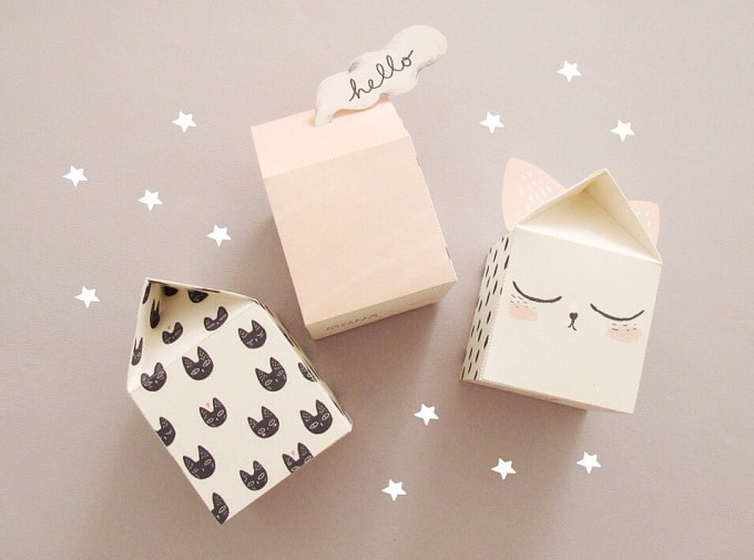 DIY cat-themed boxes