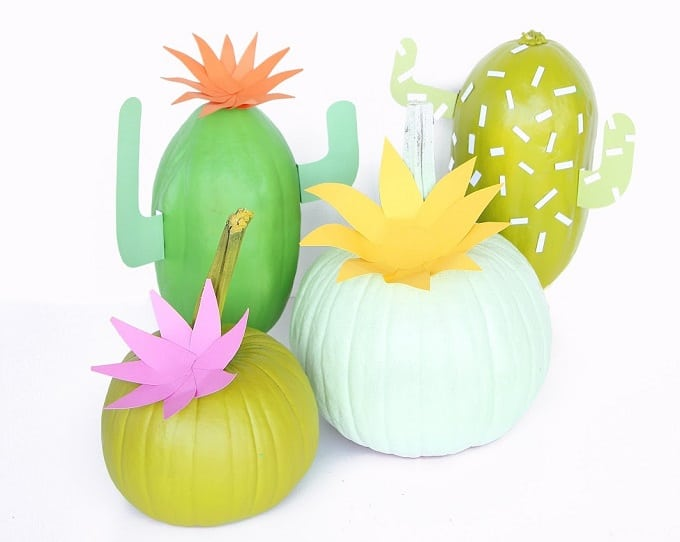 cacti with pumpkins