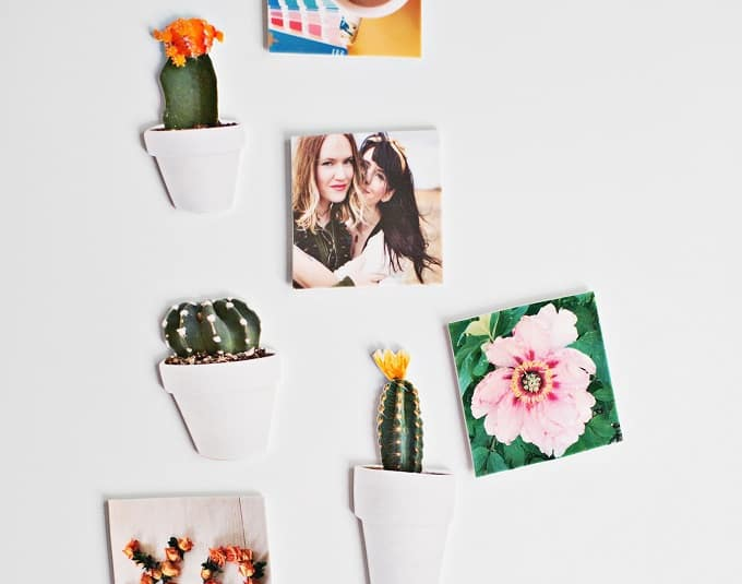 DIY cacti magnets
