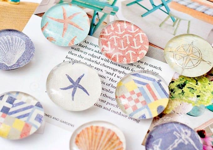 sea shell magnets