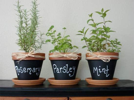 Terra Cotta Chalkboard Pots
