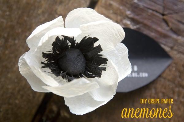 paper crepe anemones