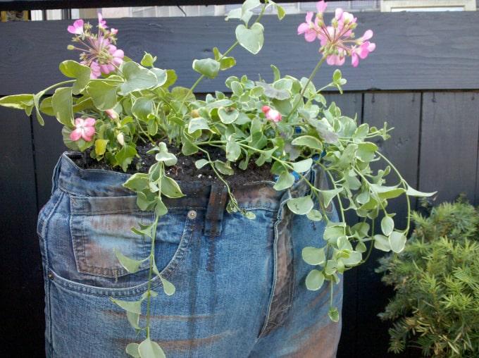 jeans flower planter