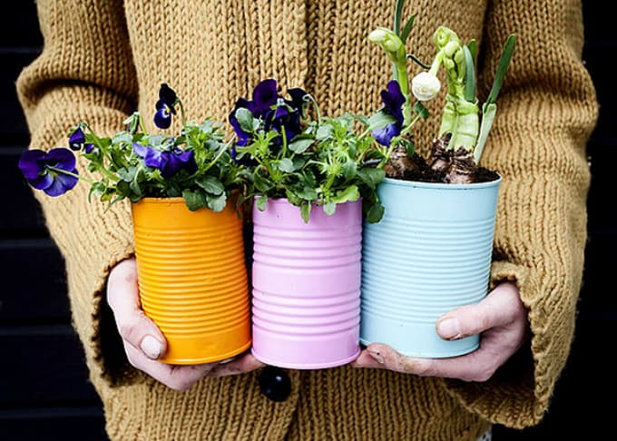 can plant holders