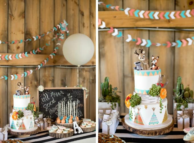 wild and free birthday party cake