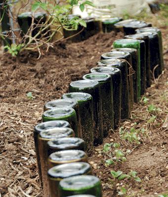 wine bottles garden border