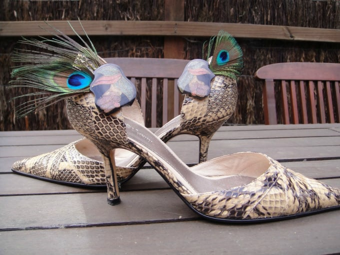 shoes with feathered clips