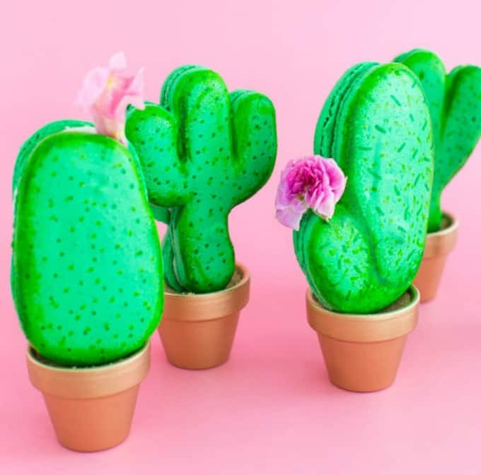 potted-cactus-macarons