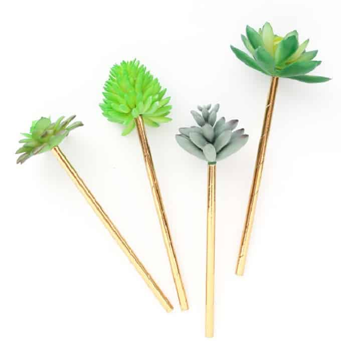 succulent drink stirrers