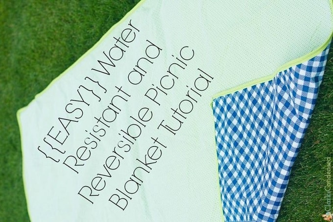 water-resistant and reversible picnic blanket