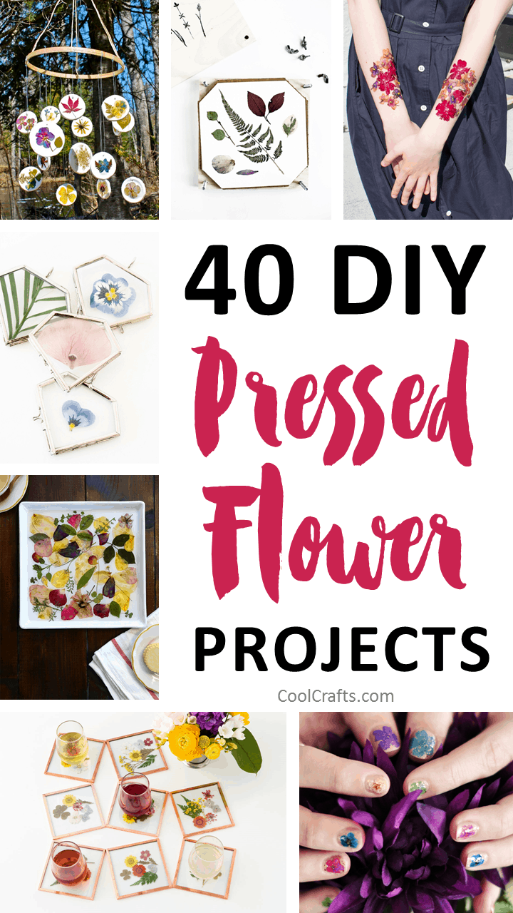 40 Stunning Pressed Flower Art Ideas • Cool Crafts