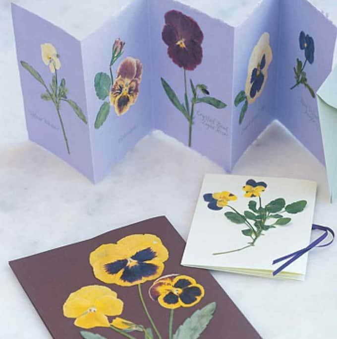 Pressed Flower Cards - We compiled a list of 39 other DIY pressed flower ideas for you to make | Coolcrafts.com