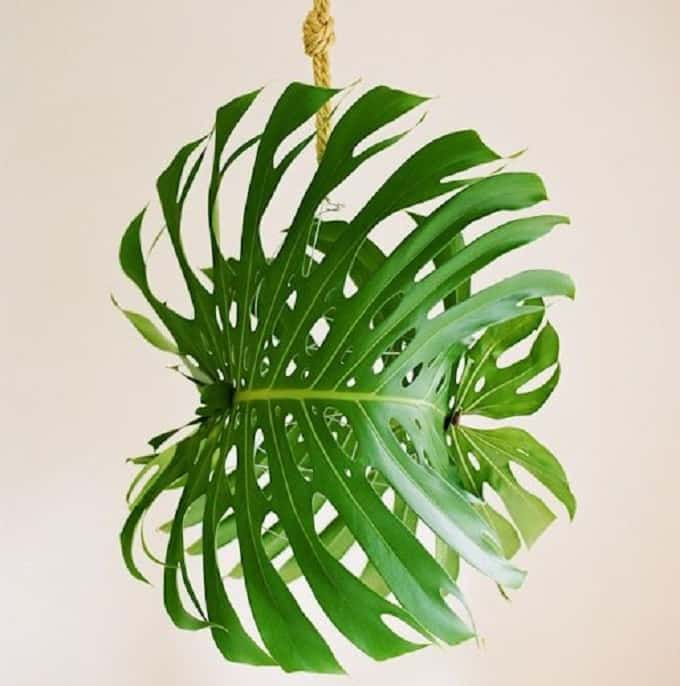 Tropical Leaf Pendant Light - We compiled an eye-catching list of 30 DIY tropical leaf craft ideas for you try. | Coolcrafts.com