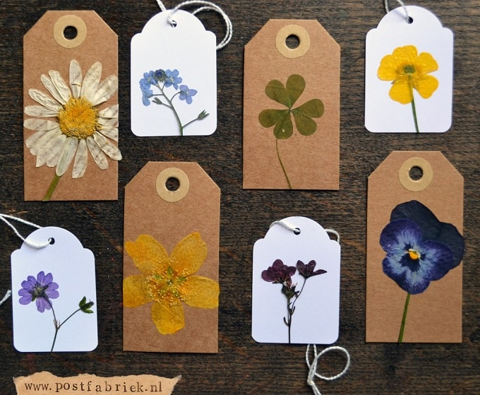 Pressed Flower Gift Tags - We compiled a list of 39 other DIY pressed flower ideas for you to make | Coolcrafts.com