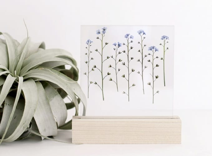 Pressed Flower Art Display - We compiled a list of 39 other DIY pressed flower ideas for you to make | Coolcrafts.com