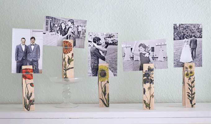botanical photo holder clips