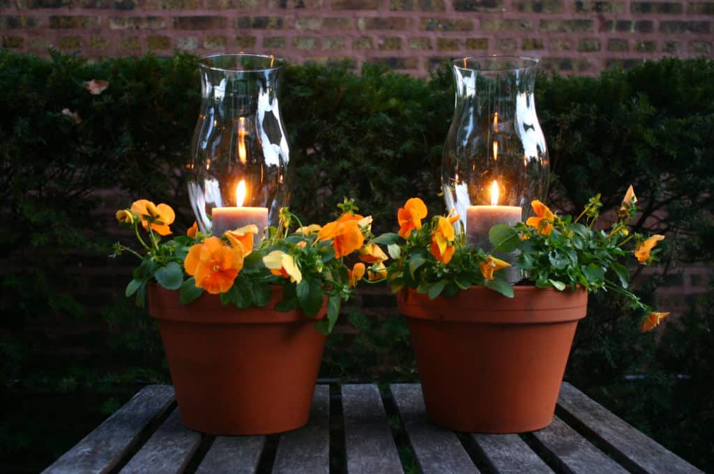 Potted Terra Cotta Candle Planters