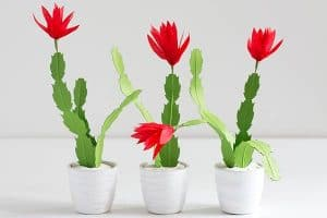 Paper Christmas Cactus